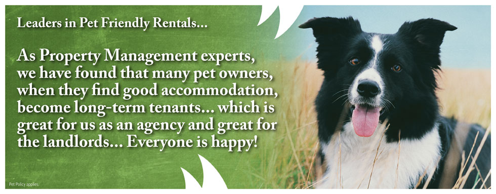 Pet Friendly Rentals 2